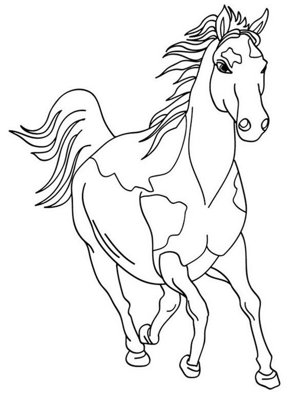 Pferde zum ausmalen. Bild 1