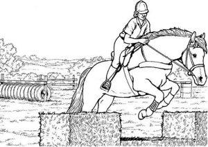 Pferde zum ausmalen. Bild 2