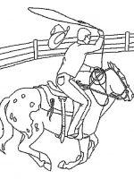 Pferde 6