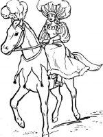 Pferde 8