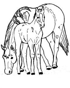 Pferde zum ausmalen 10