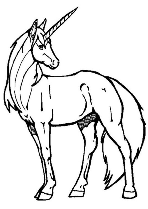Ausmalbild Einhorn 1