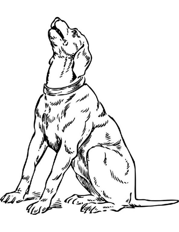 Ausmalbilder Hund 6